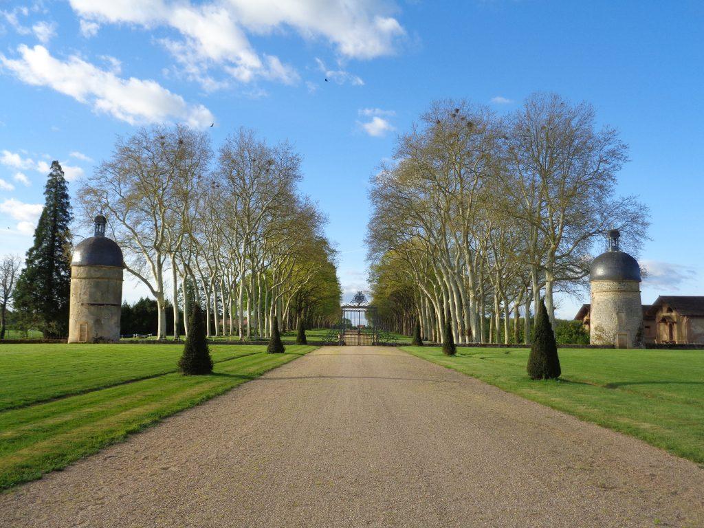 Cette grande allée qui aboutit à la Cour d'Honneur constitue l'accès historique vers les jardins de Digoine.